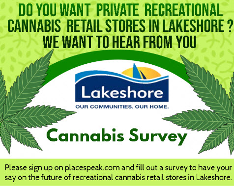 postcard image of cannabis survey invitation for PlaceSpeak